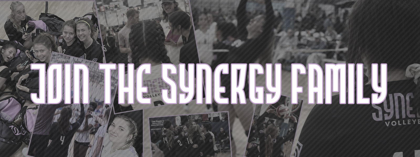 Join the Synergy Family